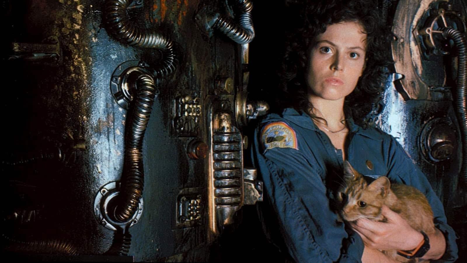 Horror Movies to Stream on Amazon Prime
